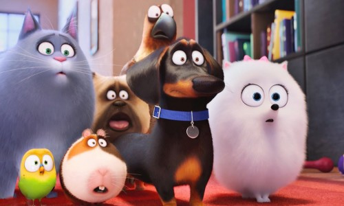 secret life of pets still