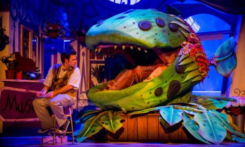 Little Shop of Horrors feature