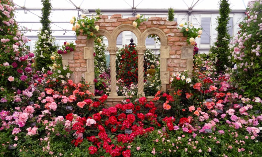 Chelsea flower show 2017 highlights the upcoming for Chelsea 2017 show gardens